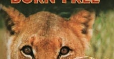 Born Free film complet