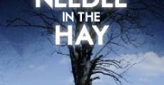 Needle in the Hay (2011)