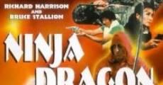 Filme completo Dragões Ninja