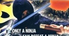 Filme completo Ninja the Protector