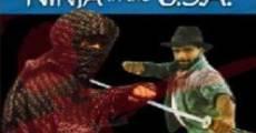 Ver película Ninja USA