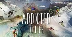 Película Nuit de la Glisse: Addicted to Life