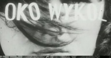 Ver película Oko wykol