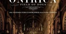 Onirica - Psie pole streaming