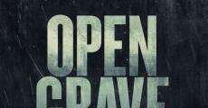 Película Open Grave