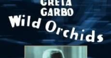 Filme completo Orquídeas Silvestres