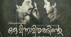 Ver película Oru Minnaminunginte Nurunguvettam