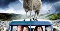 Filme completo Ovelha Negra