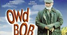 Película Owd Bob, un perro maravilloso