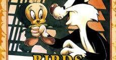Ver película Pájaros anónimos