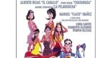 Ver película Pancho el Sancho