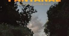 Película Pantanal