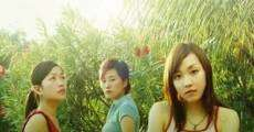 Ver película Paradise Girls