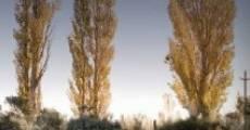 Patagonia (2010) stream