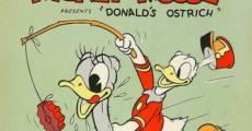 Ver película Pato Donald: El avestruz de Donald