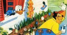 Ver película Pato Donald: El nuevo vecino