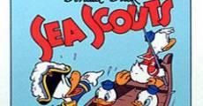 Ver película Pato Donald: Exploradores marinos