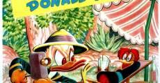 Ver película Pato Donald: Payaso de la selva