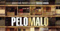 Pelo malo (2013) stream
