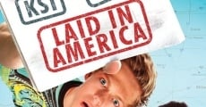 Laid in America streaming