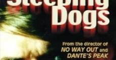 Ver película Perros de presa