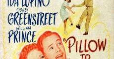 Ver película Pillow to Post