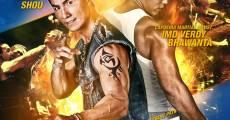 Pirate Brothers (2011) stream