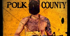 Polk County streaming