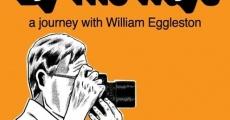 Ver película Por los caminos: Un viaje con William Eggleston