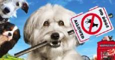 Filme completo Pudsey the Dog: The Movie