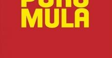 Película Puro mula