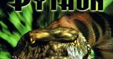 Película Python