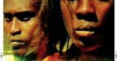 Ver película Querido Haití