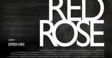 Filme completo Red Rose