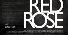 Película Red Rose