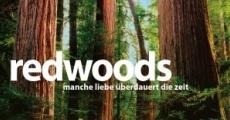 Película Redwoods