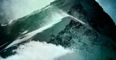 Película Reel Rock 8