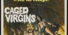 Filme completo Vierges et vampires
