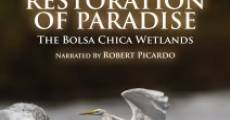 Película Restoration of Paradise