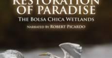 Restoration of Paradise (2014) stream