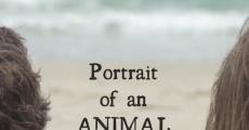 Película Retrato de un comportamiento animal