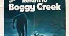 Regreso a Boggy Creek