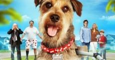 Filme completo Robo-Dog