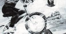 Película Roda-roda