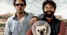 Due Date film complet
