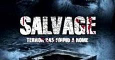 Filme completo Terror no Sótão