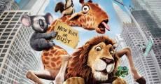 Película Salvaje (The Wild)