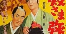 Ver película Samurai Vagabonds
