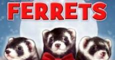 Película Santa's Little Ferrets