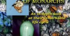 Película Secret Lives of Monarchs